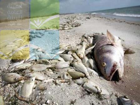 kuwait-dead-fish.201705035631.jpg